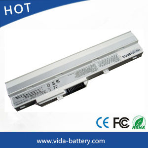 Laptop Battery/Lithium Battery for LG X110 X110-G U100 Power Bank pictures & photos