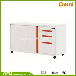 Steel Roller Shutter Door Cabinet (OMNI-XT-04) pictures & photos