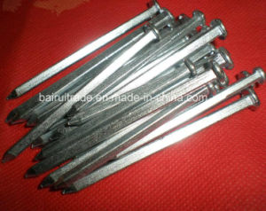 Common Nail/ Common Wire Nail/Common Iron Nails pictures & photos