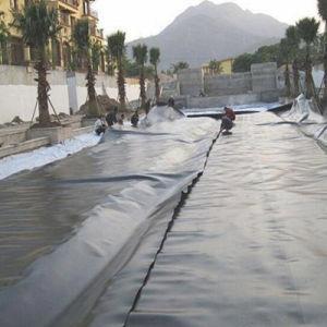 HDPE Plastic Geomembrane for Aquaculture pictures & photos