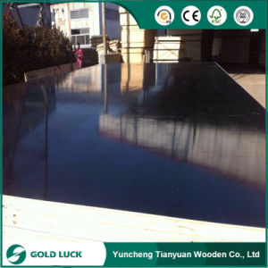 Balck Film Recycle Core Film Faced Plywood for Building pictures & photos