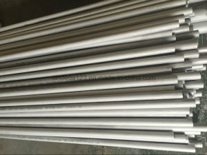 Duplex Stainless Steel Seamless Pipe and Tube (S31803 S32205 S32750) pictures & photos