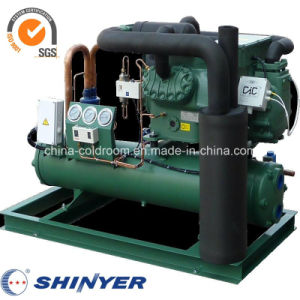 34-44HP Air-Cooled Condensing Units with Semi-Hermetic Bitzer Compressors Low Temperature pictures & photos