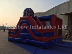 High Quality Inflatable Descendants Theme Jumping Castle for Sale pictures & photos