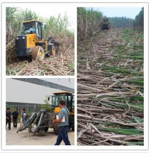 New Designed Sugarcane Harvester Machine/Sugarcane Cutting Machine Sh15