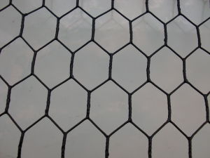 Bwg 25 Hexagonal Wire Mesh Galvanized / PVC Coated pictures & photos