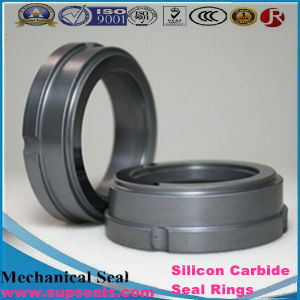 G9 Silicon Carbide Ssic Rbsic Ring M7n G9 L Da Type Shaft Seal Ring pictures & photos