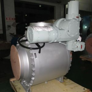 API6a, 6D, Trunnion Mounted/Floating Ball Valve