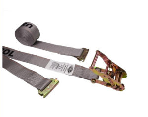 E Track Ratchet Tie Down Strap Fitting pictures & photos