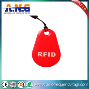 Laser Engraved Number Tk4100 RFID 125kHz Key Tag pictures & photos