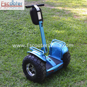 4000W Self Balancing Swagway Scooter pictures & photos