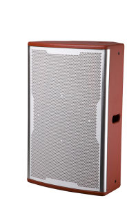 Orange Full Range Professional Loudspeaker pictures & photos