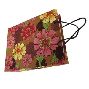 Elegant Decorative Paper Shopping Bag, Paper Gift Bag, Paper Bag pictures & photos