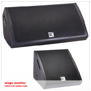 Stage Monitor PS15 Studio Audio Speakers pictures & photos