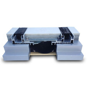 China Hot Aluminum Base Waterproof EPDM Expansion Joints pictures & photos