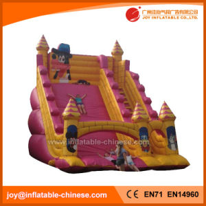 Giant Outdoor Commercial Wave Adult Slide Inflatable Kids Slide (T4-314) pictures & photos