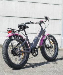250W/350W/500W 26X4 Fat Tire Electric Bike/E Bicycle/Pedelec/Electric Snow Bike/E Snow Bike with Hidden Battery En15194 pictures & photos