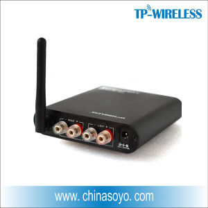2.4GHz Digital Wireless Power Amplifier for Wireless Surround Sound System pictures & photos