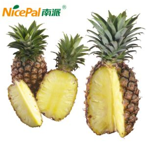 Natural Spray Dried Pineapple Juice Powder / Pineapple Powder/ Pineapple Drink Powder pictures & photos
