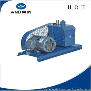 Vane Vacuum Pump for Refrigeration Part/High Pressure Pump pictures & photos