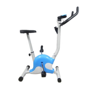 Indoor Fitness Cardio Machine Workout Upright Exercise Bike