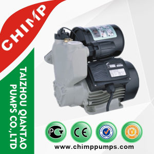 Small Size 0.5HP Automatic Self-Priming Vortex Water Pumps pictures & photos