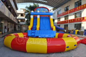 Giant Theme Inflatable Water Slide with Big Pool (CHSL501-1) pictures & photos