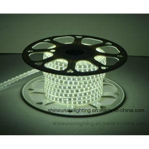 LED Strip Light- Fourth Generation 5050-72PCS-3W/M Single Color pictures & photos