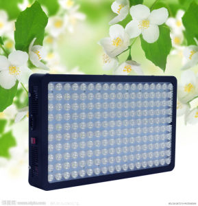 Blue Red Orange White 900W LED Panel Hydroponic Plant Lamp pictures & photos