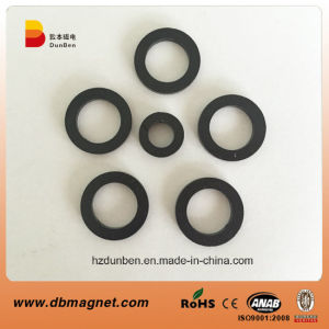 Plastic Injection Bonded NdFeB Magnet in Anisotropic pictures & photos