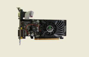 2017sales Champion Good Price Hot Sales Promotion VGA Card Gt210 1g 64bit pictures & photos