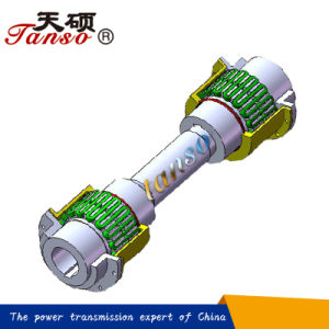 Tanso Brand Double-Piloted Design JSJ Spacer Grid Coupling pictures & photos