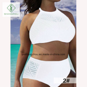 Plus Size Hollow High-Waisted Split Sling Plain Fashion Ladies Bikini pictures & photos