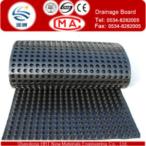 Tunnel HDPE Drain Board, HDPE Dimple Sheet for Tunnel pictures & photos