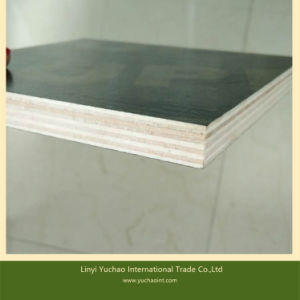 Film Faced Plywood for Kenya Market pictures & photos