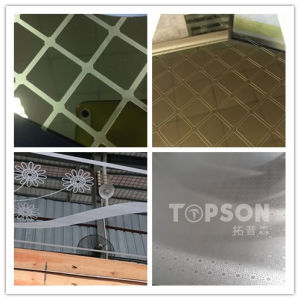 201 304 Elevator Door Stainless Steel Plate Mirror Etched for Furniture Accessories pictures & photos