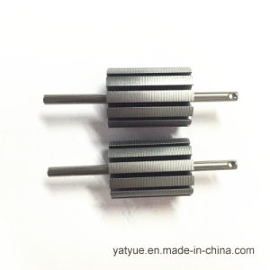 Micro Motor Parts Rotor 23mm X 12p pictures & photos
