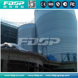 Cement Silo Manufacturer for Grain with Best Design pictures & photos