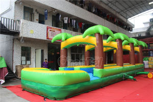 Tropical Inflatable Double Slip and Slide with Pool Chsl657 pictures & photos
