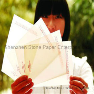 Stone Paper (RPD) Rich Mineral Paper Double Coated pictures & photos