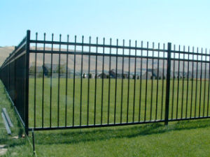 Discount Price Quality Powder Coated Spear Top/Flat Top Garden Fence From Dehoo pictures & photos