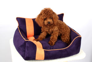 Pet Products Dog Cat Puppy Fashion Bed (B014) pictures & photos