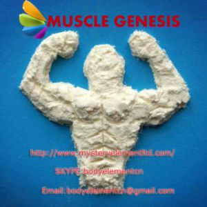 Pharmaceutical Grade Anaboil Steroid Methasteron Superdrol Powder for Muscle Building pictures & photos
