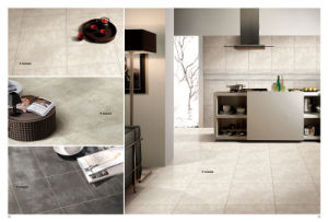 Gaogesi Series-Cement Design/Hot Sales Matte Finished/Rustic Tile Antique Brick Porcelain Floor Tile pictures & photos