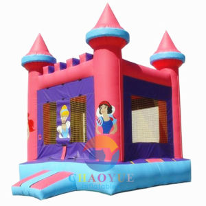 Inflatable Bouncer Combo, Inflatable Jumping Castle, Inflatable Bouncy Castle pictures & photos
