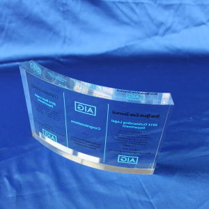Customize Clear Office Decoration Resin Award pictures & photos