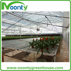 Professional Agricultural Greenhouses for Hydroponics Growing pictures & photos