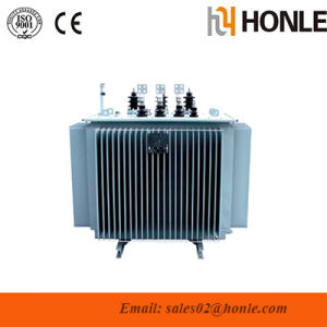 Oil Immersed Power Distribution Transformer pictures & photos
