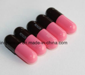 Filled Capsule Soft Capsule Round Tablet Printing Sublimation Equipment pictures & photos