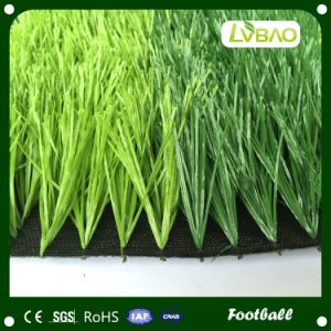 Professional Soccer & Football Artificial Grass pictures & photos